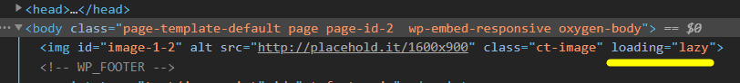Loading Lazy attribute in HTML